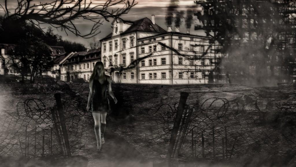 Klosterladen_2048